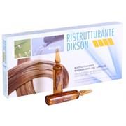 DIKSON AMPOULE RISTRUTTURANTE - Восстанавливающий комплекс мгновенного действия для очень сухих и поврежденных волос 12 х 12мл